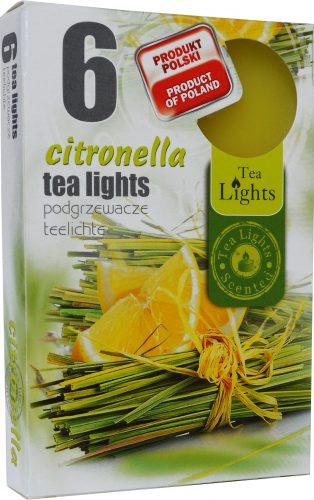 citronella 2019 1