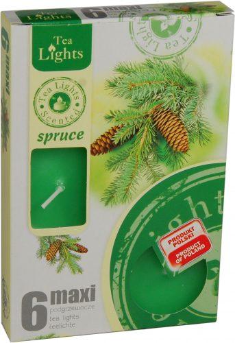 maxi 6 spruce